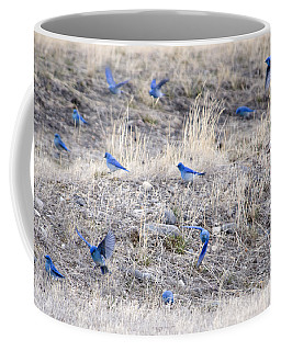 Spring Just Flew In Coffee Mug