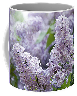 Spring Lilacs In Bloom Coffee Mug