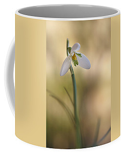 Coffee Mug featuring the photograph Spring Messenger by Annie Snel