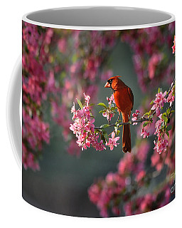 Spring Morning Cardinal Coffee Mug