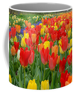 Spring Of Glory Coffee Mug