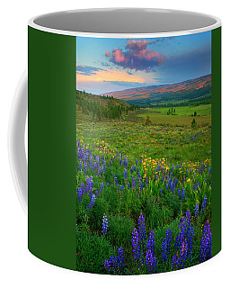 Spring Storm Passing Coffee Mug