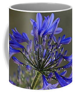 Spring Time Blues Coffee Mug