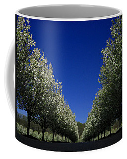 Spring Tunnel Coffee Mug