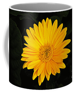Coffee Mug featuring the photograph Spring by William Norton