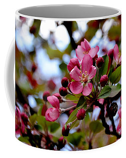 Spring1 Coffee Mug