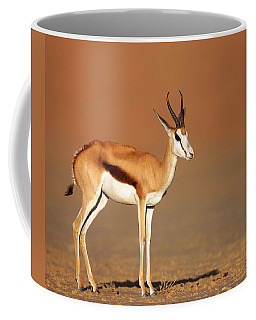 Springbok On Sandy Desert Plains Coffee Mug
