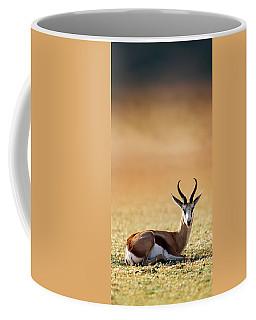 Springbok Resting On Green Desert Grass Coffee Mug