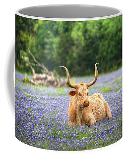 Springtime In Texas Coffee Mug