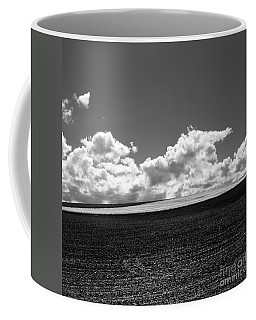 Sprouting Field Of Sunflowers And Field Of Rape At Back. Auvergne. France Coffee Mug
