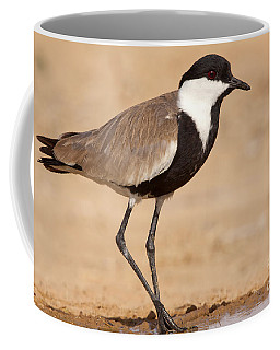 Spur-winged Lapwing Vanellus Spinosus Coffee Mug