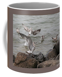 Squabbling Gulls Coffee Mug by Patricia Overmoyer