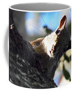 Coffee Mug featuring the photograph Squirrel 003 by Chris Mercer