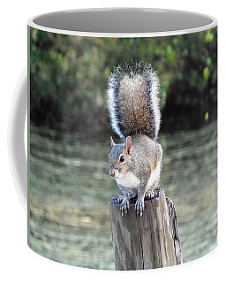 Coffee Mug featuring the photograph Squirrel 035 by Chris Mercer