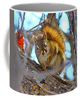 Squirrel Duty. Coffee Mug