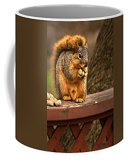Squirrel Eating A Peanut Coffee Mug