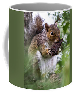 Squirrel With Pine Cone Coffee Mug