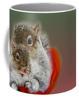 Coffee Mug featuring the photograph Squirrels Valentine by Mike Breau