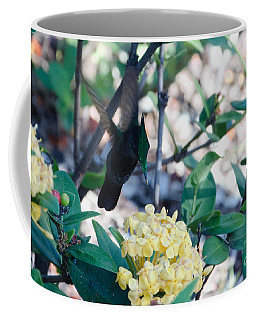 St. Lucian Hummingbird Coffee Mug