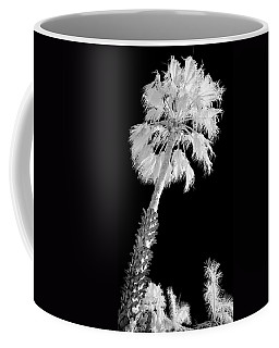St. Maarten Tropical Palm Coffee Mug