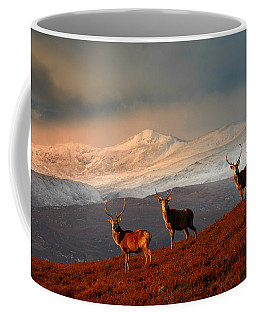 Stags At Strathglass Coffee Mug