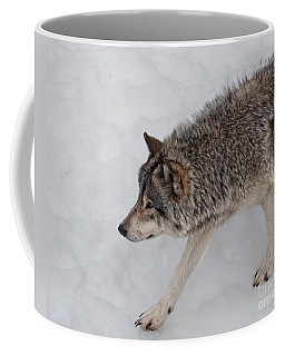 Coffee Mug featuring the photograph Stalker by Bianca Nadeau