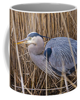 Stalking Fish In The Reeds Coffee Mug