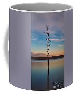 Stand Alone 16x9 Crop Coffee Mug by Michael Ver Sprill