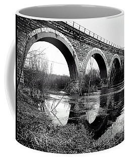 Coffee Mug featuring the photograph Standing Still by Viviana  Nadowski