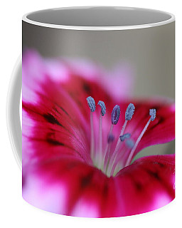 Standing Tall Sweet William Coffee Mug