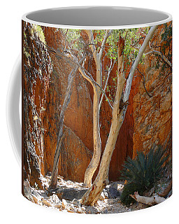 Standley Chasm Coffee Mug by Evelyn Tambour
