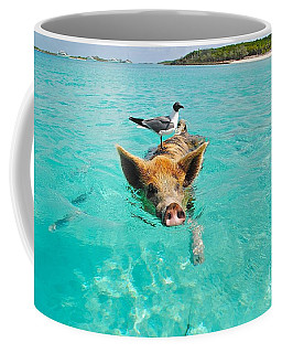 Staniel Cay Swimming Pig Seagull Fish Exumas Coffee Mug