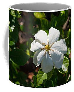 Star Of The Gardinias Coffee Mug
