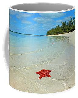 Starfish 5 Of Bottom Harbour Sound Coffee Mug
