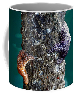 Starfish Under The Pier Coffee Mug