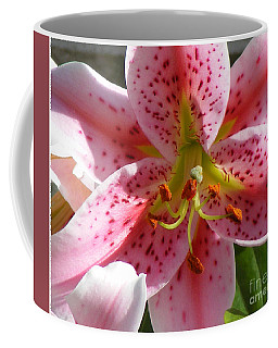 Coffee Mug featuring the photograph Stargazer Lily by Barbara Griffin