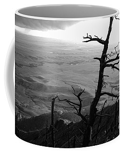 Coffee Mug featuring the photograph Stark Tree by Mary Carol Story
