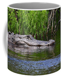 Steely Snowy Coffee Mug by Al Powell Photography USA