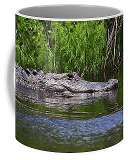 Steely Snowy Coffee Mug