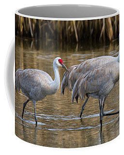 Steppin Out Coffee Mug by Randy Hall
