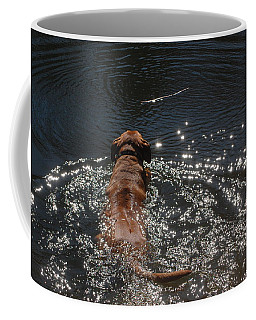 Coffee Mug featuring the photograph Stick by Mim White