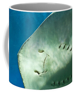 Coffee Mug featuring the photograph Stingray Face by Eti Reid