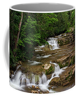 Coffee Mug featuring the photograph Stockbridge Falls by Dave Files