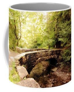 Stone Bridge  Coffee Mug by Trina  Ansel