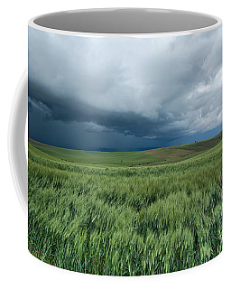 Storm Is Coming Coffee Mug