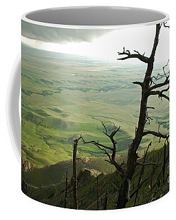 Coffee Mug featuring the photograph Stormy Tree by Mary Carol Story