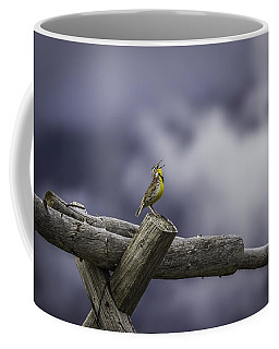 Stormy Weather And A Sweet Song Coffee Mug