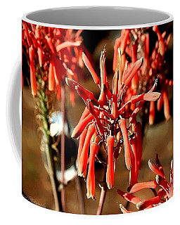 Coffee Mug featuring the photograph Strange Delight by Debra Forand
