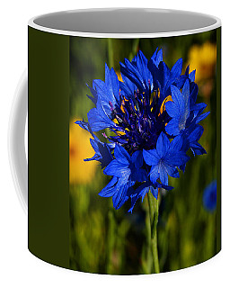 Straw Flower Coffee Mug