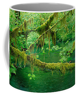Stream Flowing Through A Rainforest Coffee Mug